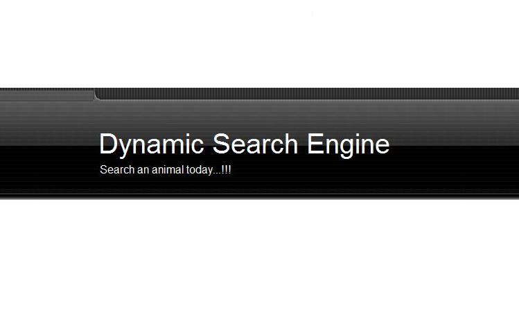 Dynamic Search Engine